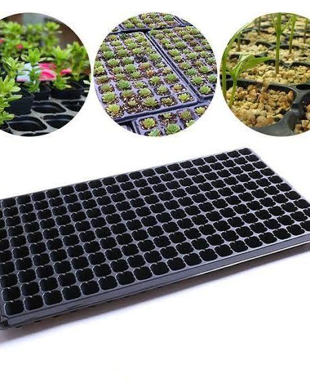 Seedling Tray-200 Holes (2pc pack)